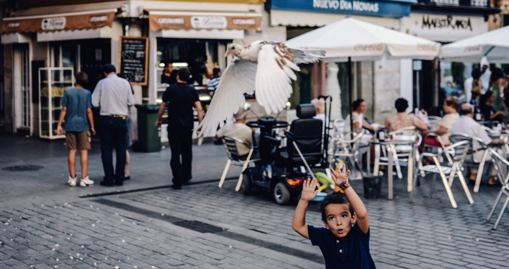 A boy waves his arms at a flying white pigeon on a square filled with people in Seville's old town.